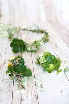 Set für die Braut - Kaktee