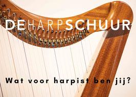 Advies over de aanschaf van jouw harp!