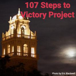 107 Project Sponsorship