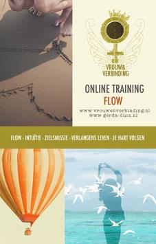 Thuistraining: Flow