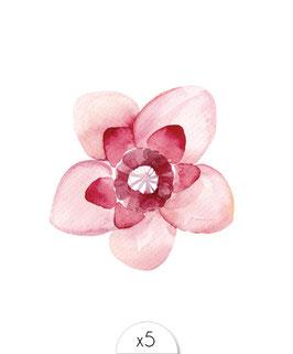 Fleur rose pâle à l'aquarelle