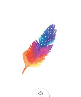 Une belle plume aquarelle dans les tons orangés, violets et bleus.
