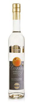 Honig Marille 35% vol. (0,5 Liter) Spirituose