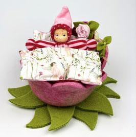 Blütenbett mit Granuwichtel