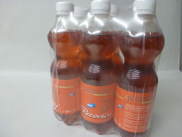 RECOVERY DRINK - 6er Pack