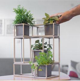 Plant1Up set