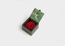 Einzelrose in Geschenkbox mit Deckel Größe L