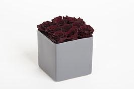 Rosengesteck in Keramikwürfel