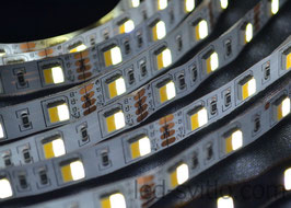 Светодиодная лента Multi White SMD5050 60LED/m IP65 (герметичная)