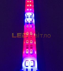 Светодиодный фитосветильник 12В 100см 48Вт 144Led
