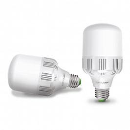 Лампа светодиодная Eurolamp 40Вт Е40