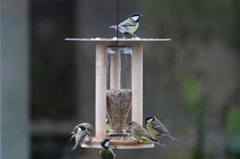 Lovenest Feeder - das etwas andere Vogelhaus