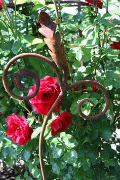 Rosenstab Erntedank