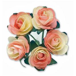 12 Mini Rosen peach