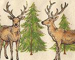 Motivband Hirsche beige, 60 mm