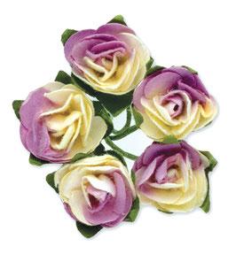 12 Mini Rosen weiß-lila