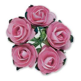 12 Mini Rosen altrosa