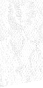 Spitzenband weiß, 2 Meter