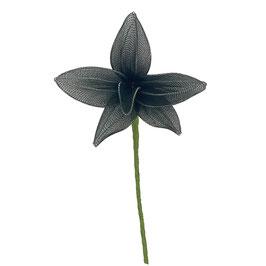 Organza Lilie schwarz