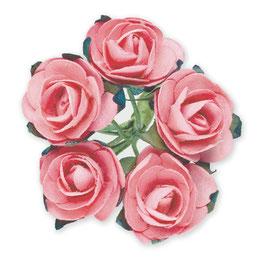 12 Mini Rosen babyrosa