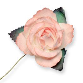 Große Papier Rose peach, 3 Stück