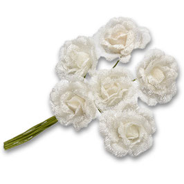 6 Spitzen Rosen weiß
