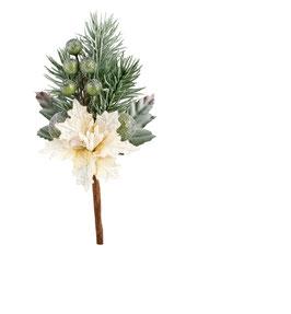 Weihnachts-Zweig mit weißem Weihnachtsstern