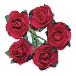12 Mini Rosen rot