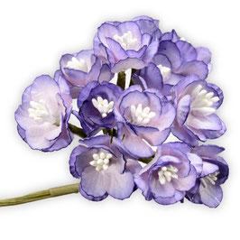 12 Papier Kirschblüten lila
