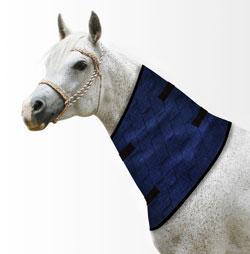 Halskühler für Pferde