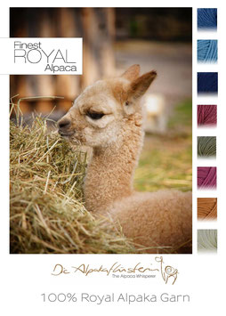 ROYAL Alpaka Wolle