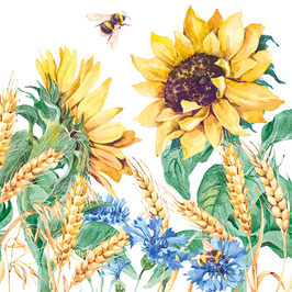 27 Ser. Sonnenblummen