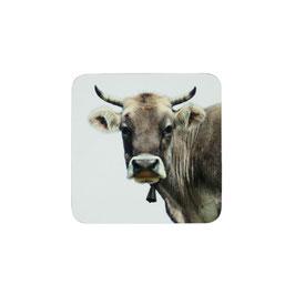 Untersetzter Allgäuer Kuh