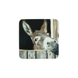 Untersetzter Esel
