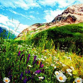 08 Ser.  Mountain Scenery