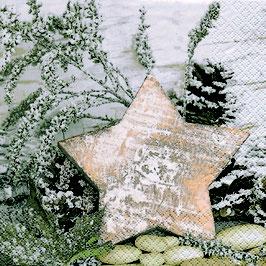 28 Ser. Wooden Star