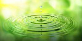Wasserschwebeliege - Pflege zum Wohlfühlen