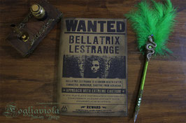 Black Wizard Notebook: Sirius Black o Bellatrix Lestrange?