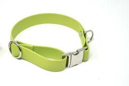 Halsband & Leine aus Biothane grün