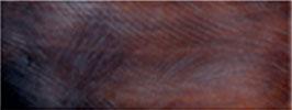 """Plaque de Corne de Buffle couleur """"Amaranthe"""" 165mm X 60mm épaisseur 6mm"""