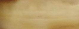 """Plaque de Corne de Buffle couleur """"Movingui"""" 165mm X 60mm épaisseur 8mm"""