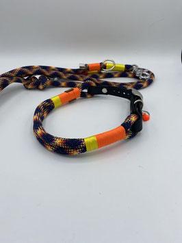 Set Snake
