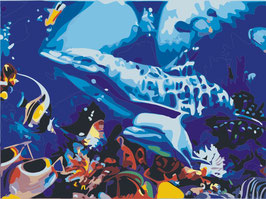 30×40-海底パラダイス