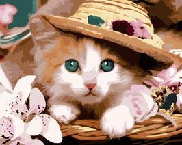 30×20-帽子と猫