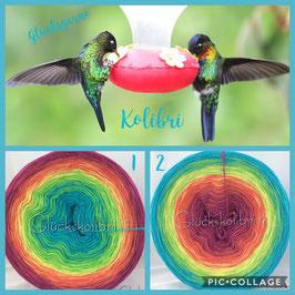 Kolibri 1 oder 2