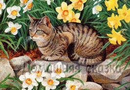 Кошка с нарциссами (Ж-16)