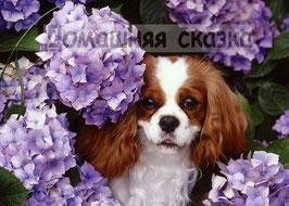 Собачка в кустах гортензии (Ж-1)