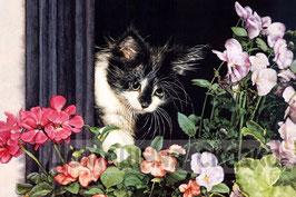 Черный котенок с цветами (Ж-20)