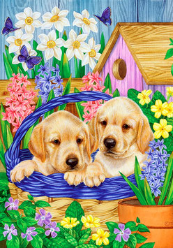 Два щенка в корзинке (Ж-37)