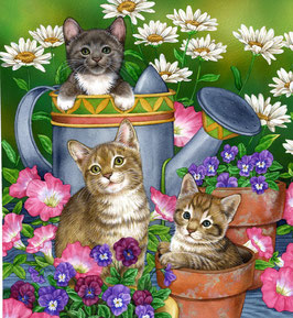 Кошки с лейкой